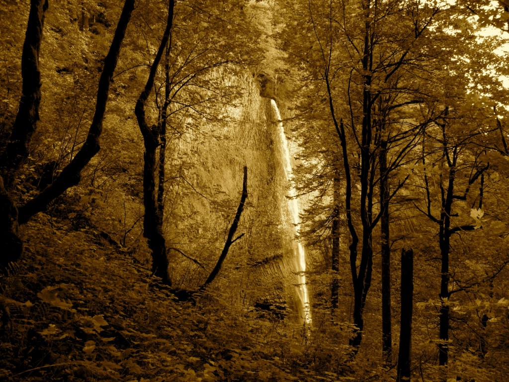 Brown tone photo of waterfall in forest
