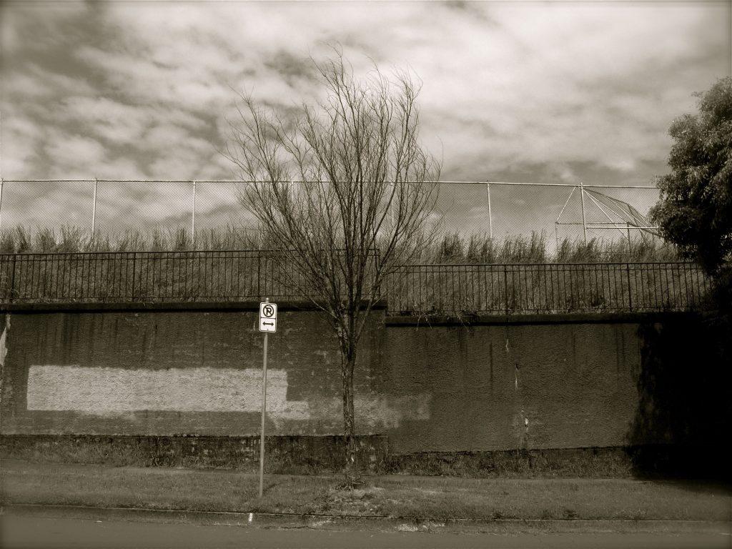 Street Scene Black and White Photo