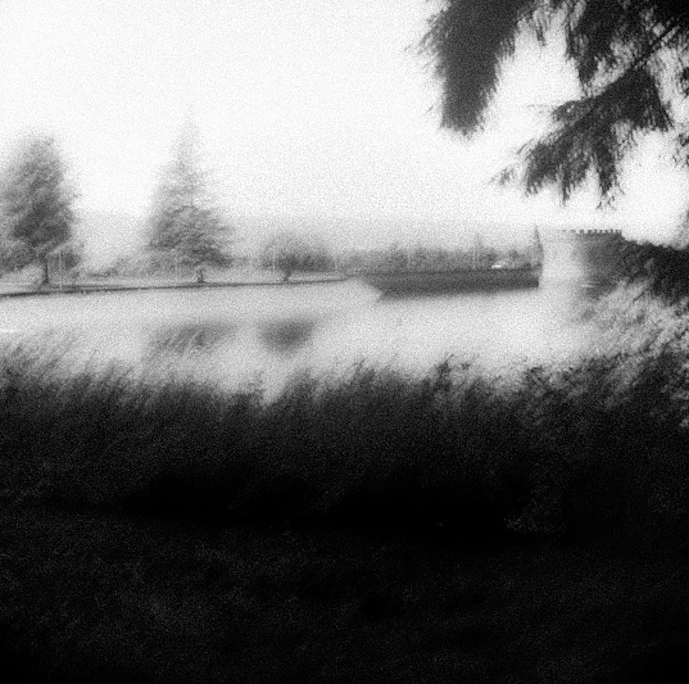 mount tabor park, portland or black and white photo