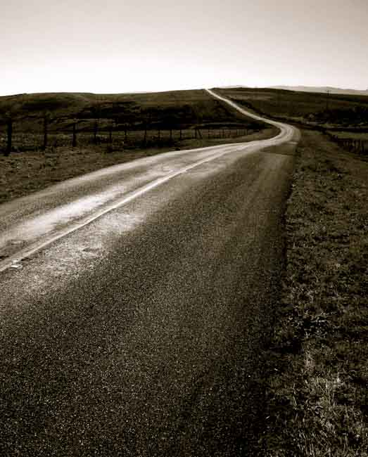 black and white photo of road at pt. reyes calif.